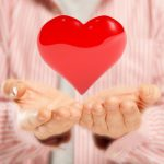 12962552 - open hands giving big red heart concept of pure love or great health